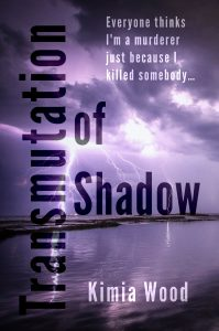 """Shadow""—A Christian Jason Bourne? — Kimia Wood"